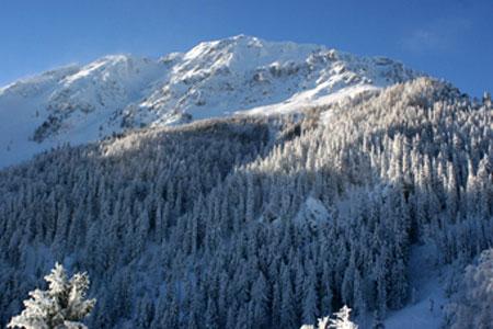 Le massif de Schneeberg