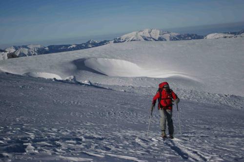 Seule dans l'immensité glacée